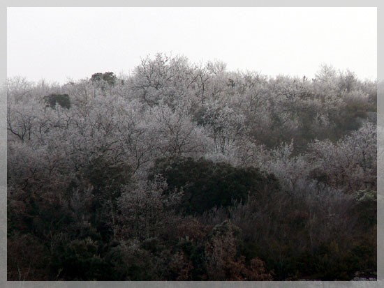 Ardèche - 2 janvier 2009